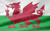 Flagge von Wales poster