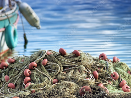 Fishing net - 12467676