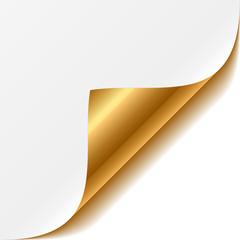 Gold corner. Vector.