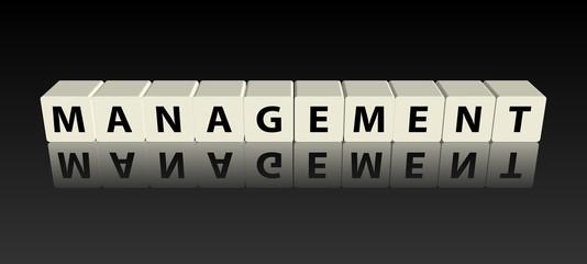 """""""Management""""  (3D - Assemblage de Cubes)"""