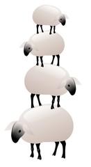 pila di pecore bianche