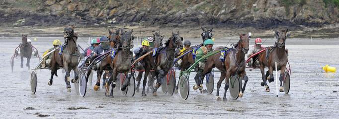 Course de trot attelé sur plage bretonne