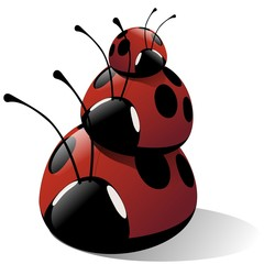 ladybug in a row