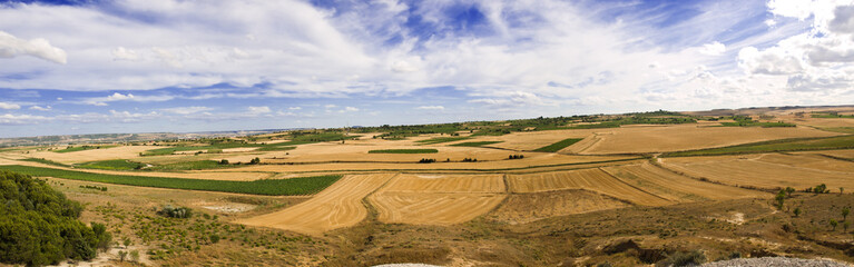 Castilla's fields panoramic 8597x2690