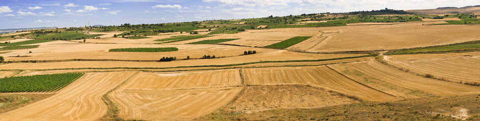 Castilla's fields panoramic 10237x2600