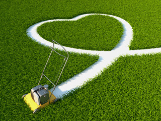 Heart on the grass