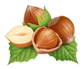 Hazelnut Green Leaf