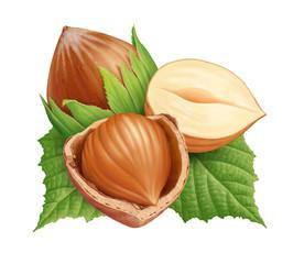 Hazelnuts 4
