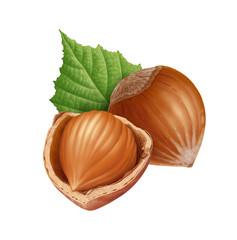 Hazelnuts 6