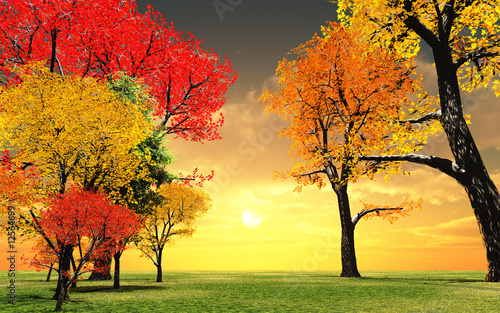 Beautiful autumn sunset - 12564699