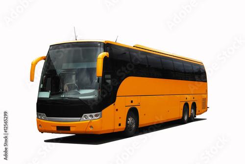 Coach - 12565299