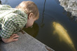 boy at fountain 1