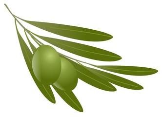 olive con foglie