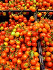 pomodorini rossi