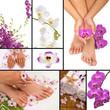 Fototapeten,pediküre,spa,orchid,orchid