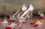defocused silver womans shoes with petals poster