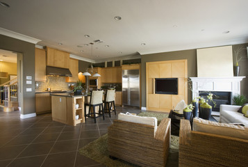 Contemporary Family Room with Kitchen