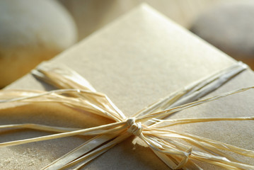 Gift Box With Raffia Ribbon