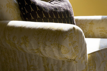 Detail of Cozy Armchair and Pillow