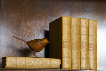 Wood Bird and Antique Books