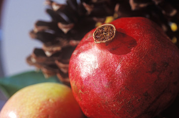 Close up of a pomegranate