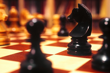 Close up of a knight placed along with other chessmen on the chessboard