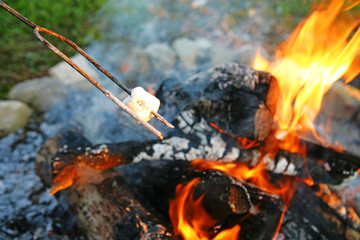 Marshmallow roasting over wood fire