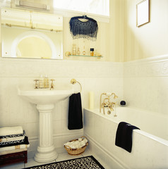 Sink and Bathtub in a Traditional Bathroom