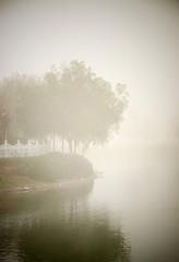 Hazy view of trees and river seen at dawn