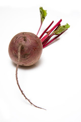 beetroot isolated on a white studio background.