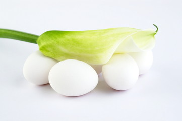 eggs and calla lily on white background