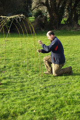 Building willow tunnel