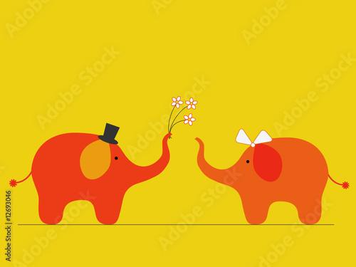 Obraz Elephants' wedding