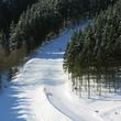 Wintersport in Winterberg ( Hochsauerland )
