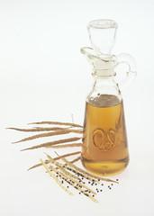 Rapsschoten mit Samen und Oel/rape seed oil