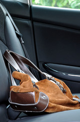 Bag in a car