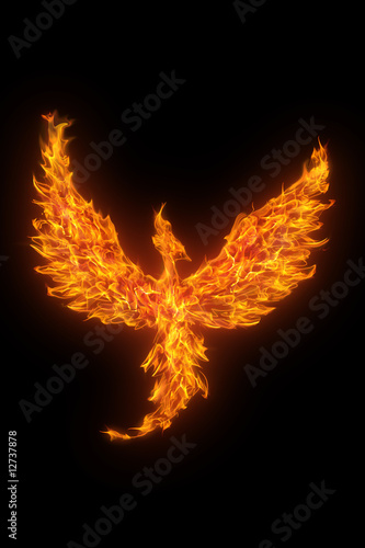 Deurstickers Vuur / Vlam burning phoenix isolated over black background