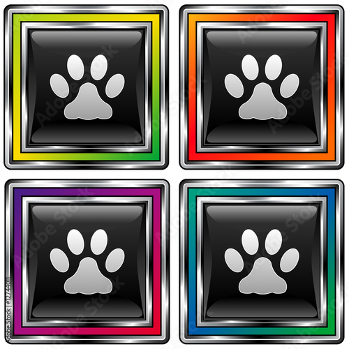 Square vector button with paw print icon