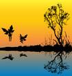 Fairy Lake Background