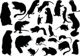 twanty one rodent silhouettes poster