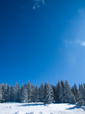 Winter landscape,Serbia poster