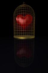 gefangene Liebe