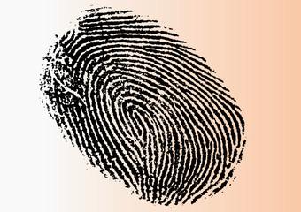 Vector Fingerprint - Very detailed