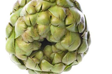 Globe Artichoke Isolated