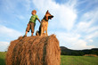 Little boy with big dog on the meadow during summer holidays