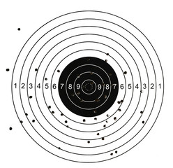 Target with bullet holes in different part