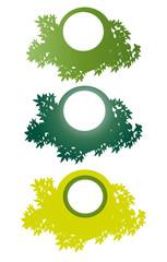 Page étiquettes feuillages vertes sur fond blanc