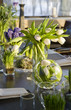 Bouquet of  tulip and hyacinth in vase of glass. Decoration of