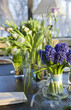 decoration of dining table.  bouquet of  hyacinth in vase of gla