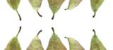 cornice di piccioli di pere poster